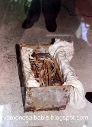 Reconocimiento de las reliquias del Santo. Cortesía de la página del Señor del Hospital.