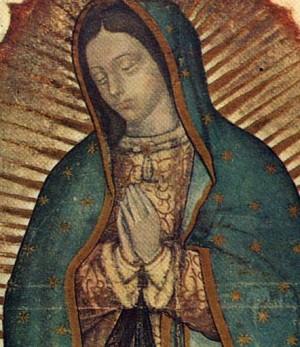 Detalle del ayate de San Juan Diego, donde se pueden distinguir más de cerca algunos detalles en la parte superior de la imagen mariana.