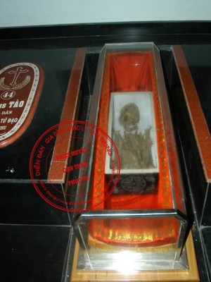 Reliquias de un santo mártir vietnamita.