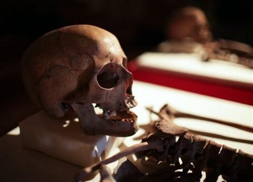 Cráneos de los Santos Crisanto y Daría.