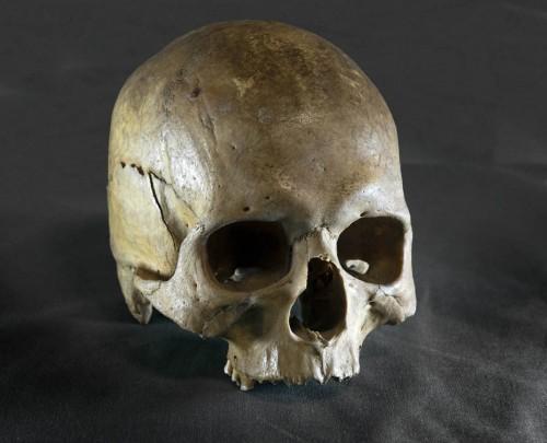 Reliquia del cráneo de San Eutiquio.