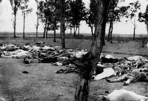 Cadáveres de refugiados armenios víctimas de la epidemia de tifus en el bosque lindero a la Santa Sede de Echmiadzín.