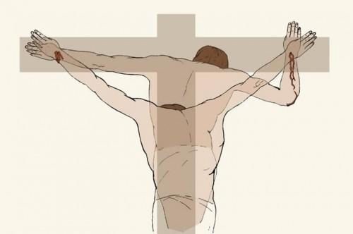 Vista de la posición adoptada por el Hombre de la Síndone en la crucifixión.