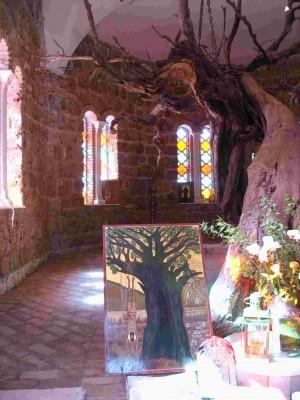 Vista del árbol donde fue colgado y martirizado el Santo.