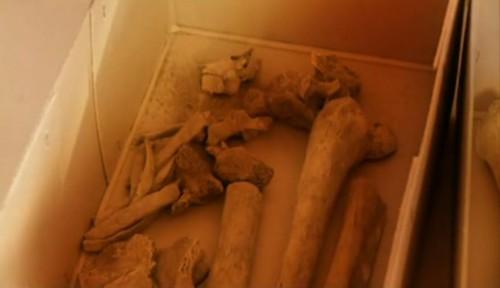 Vista de los huesos del Santo, hallados en la necrópolis vaticana.