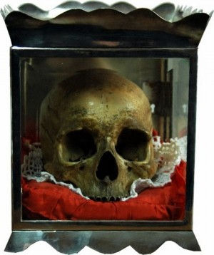 Cráneo de San Francisco Blanco venerado en Outarelo, O Barco de Valdeorras.