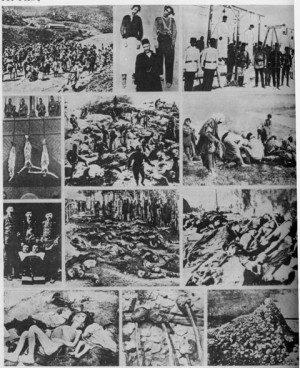 Collage con distintas fotos mostrando detalles del genocidio.